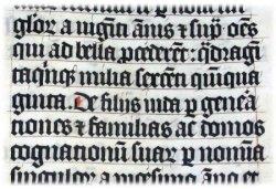 Серебряная латынь. Часть 2